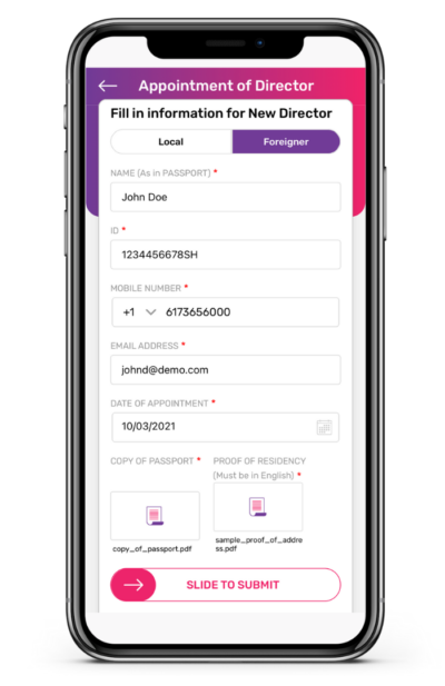Appointment of New Foreign Director App Guide 4 400x617 1